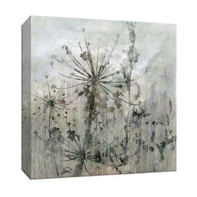 15 in. x 15 in. ''Winter's Lace I'' By PTM Images Canvas Wall Art