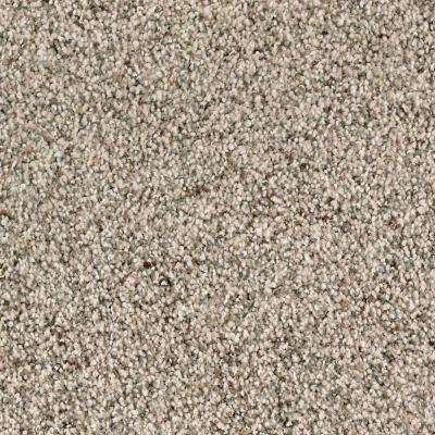 Carpet Sample - Briarmoor I - Color Dignified Texture 8 in. x 8 in.