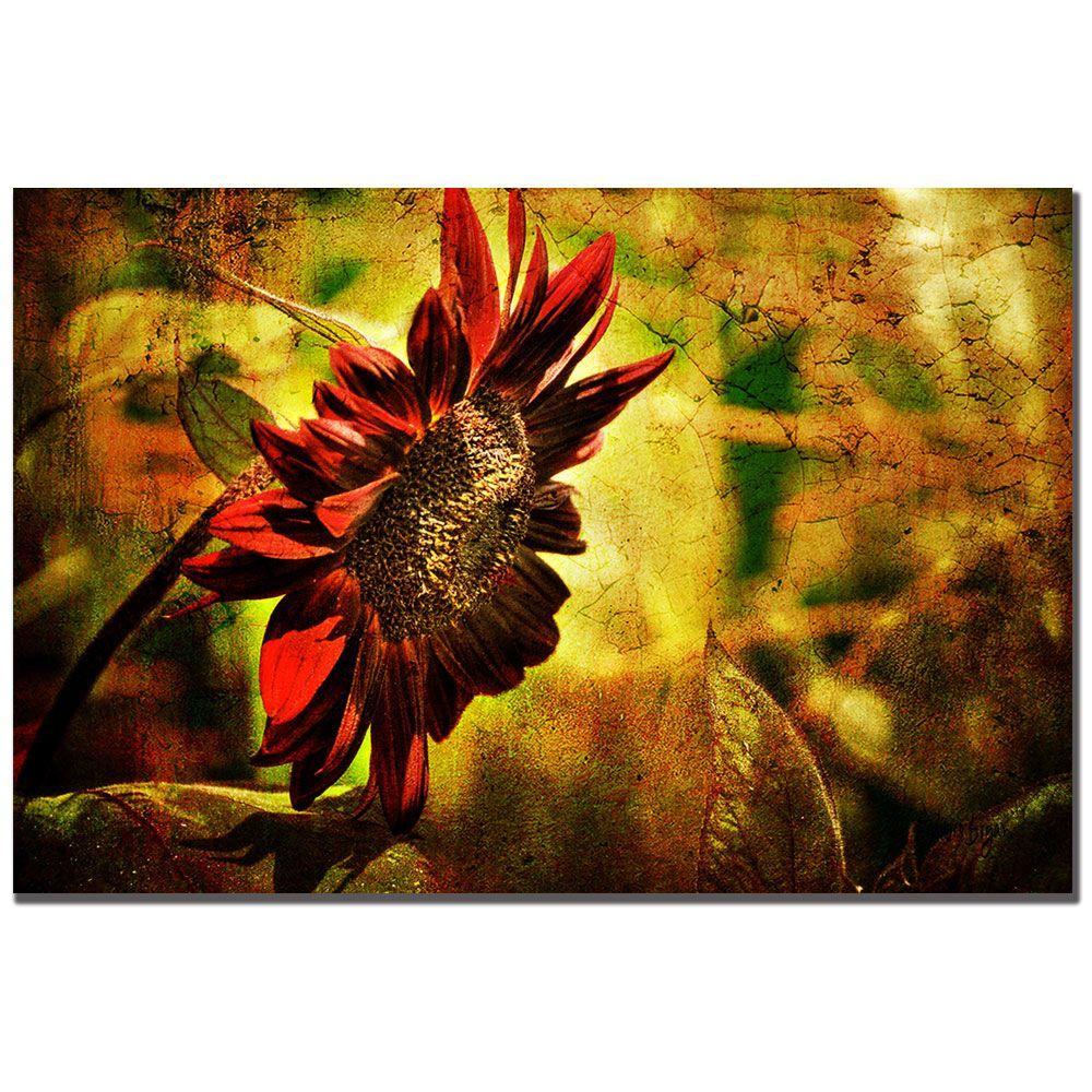 Trademark Fine Art 32 in. x 22 in. Sunflower Canvas Art