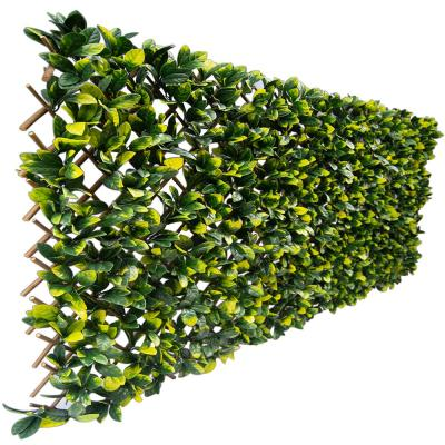 40 in. x 80 in. Artificial Lemon Leaf Lattice Screen