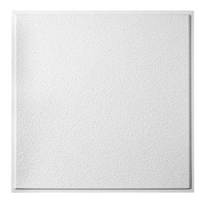 2 ft. x 2 ft. Stucco Pro Revealed Edge Lay-In Ceiling Tile