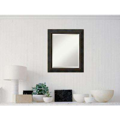 Signore Bronze Wood 21 in. W x 25 in. H Traditional Framed Mirror