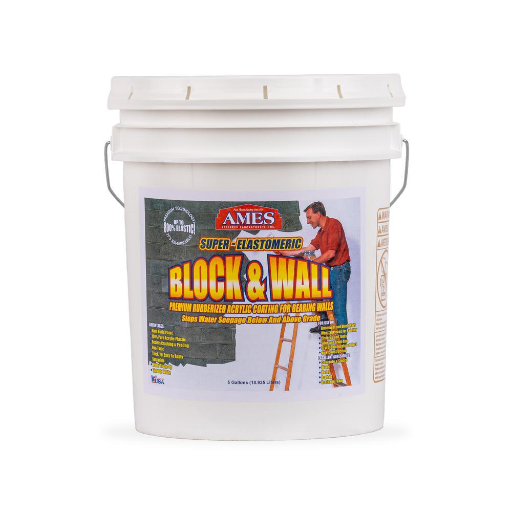 Ames Block and Wall Acrylic 5 gal. Waterproof Coating