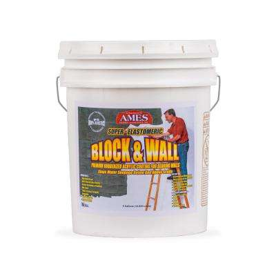 Block and Wall Acrylic 5 gal. Waterproof Coating