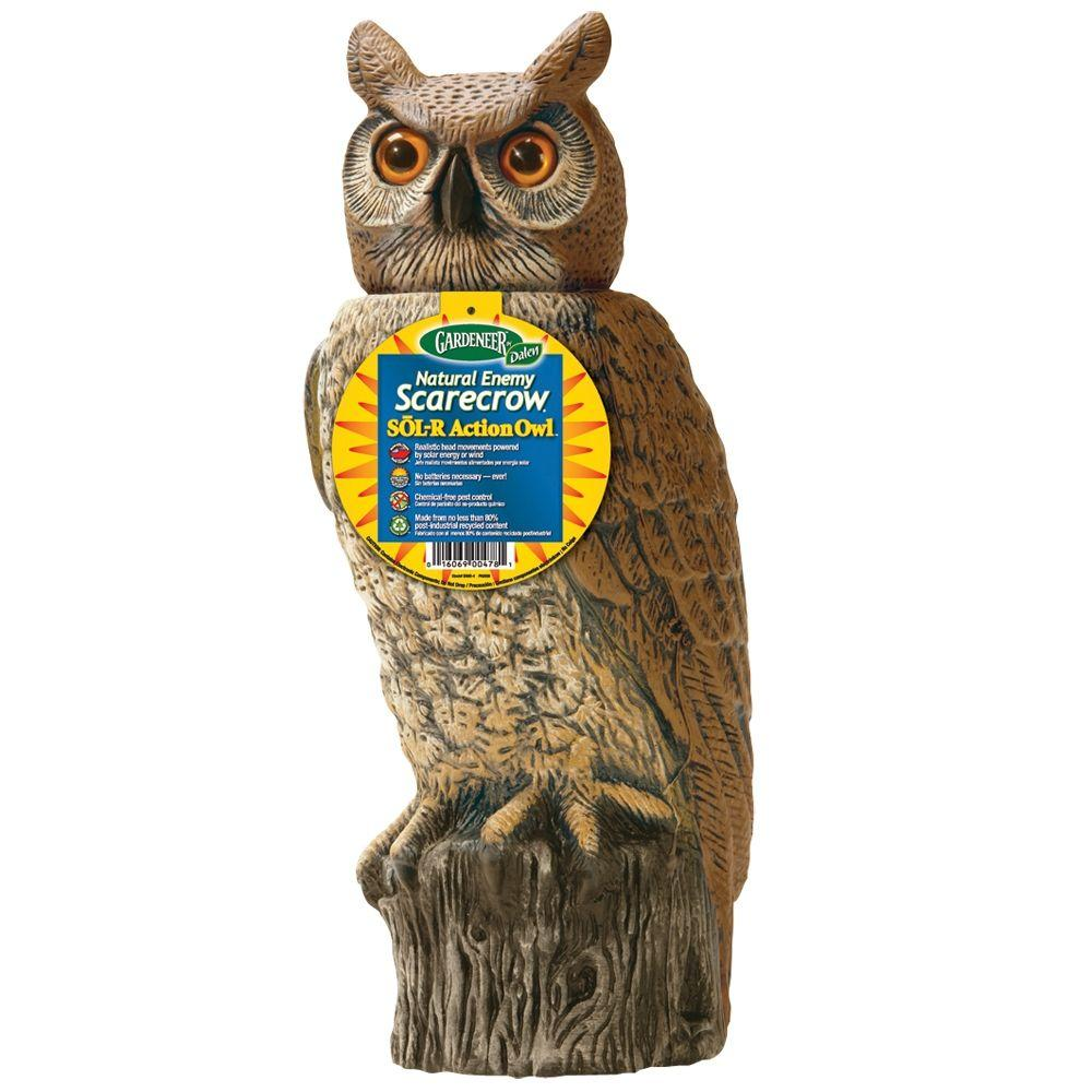 H Dalen Products SOL R Action Owl