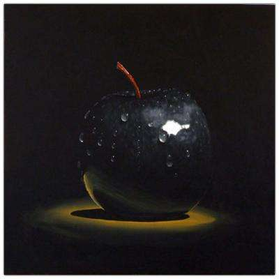 """19 in. x 14 in. """"Black Apple"""" by Roderick Stevens Printed Canvas Wall Art"""