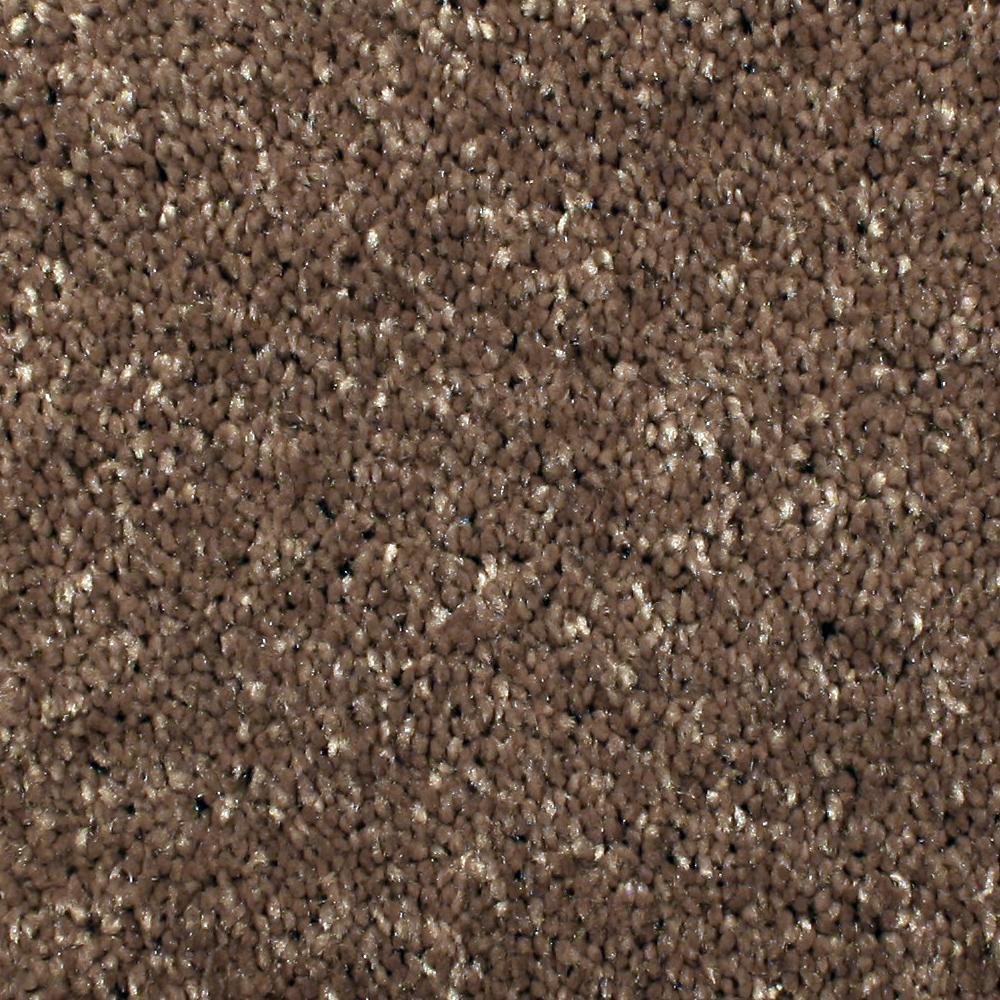 Home Decorators Collection Carpet Sample Gracious Manner I Color Foxtrot Texture 8 In X