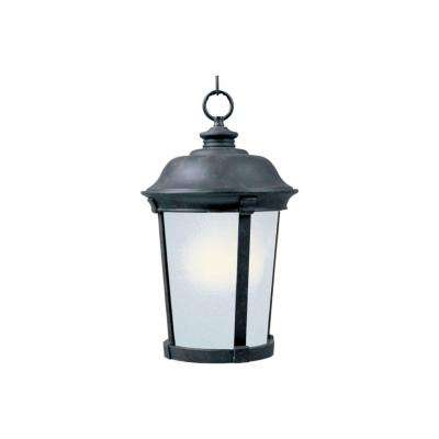 Dover EE 1-Light Bronze Outdoor Hanging Lantern