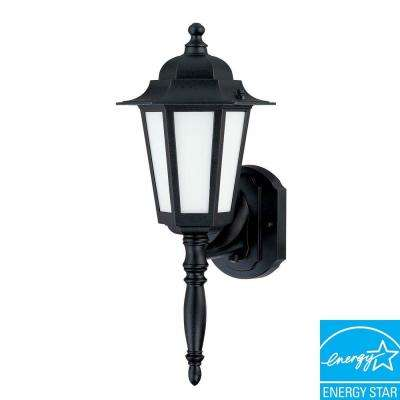Wall-Mount Outdoor Textured Black Lantern