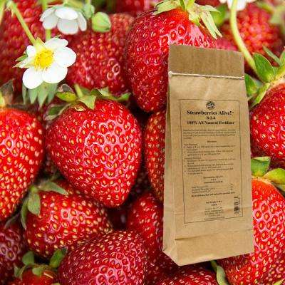 3 lbs. Strawberries Alive Fertilizer