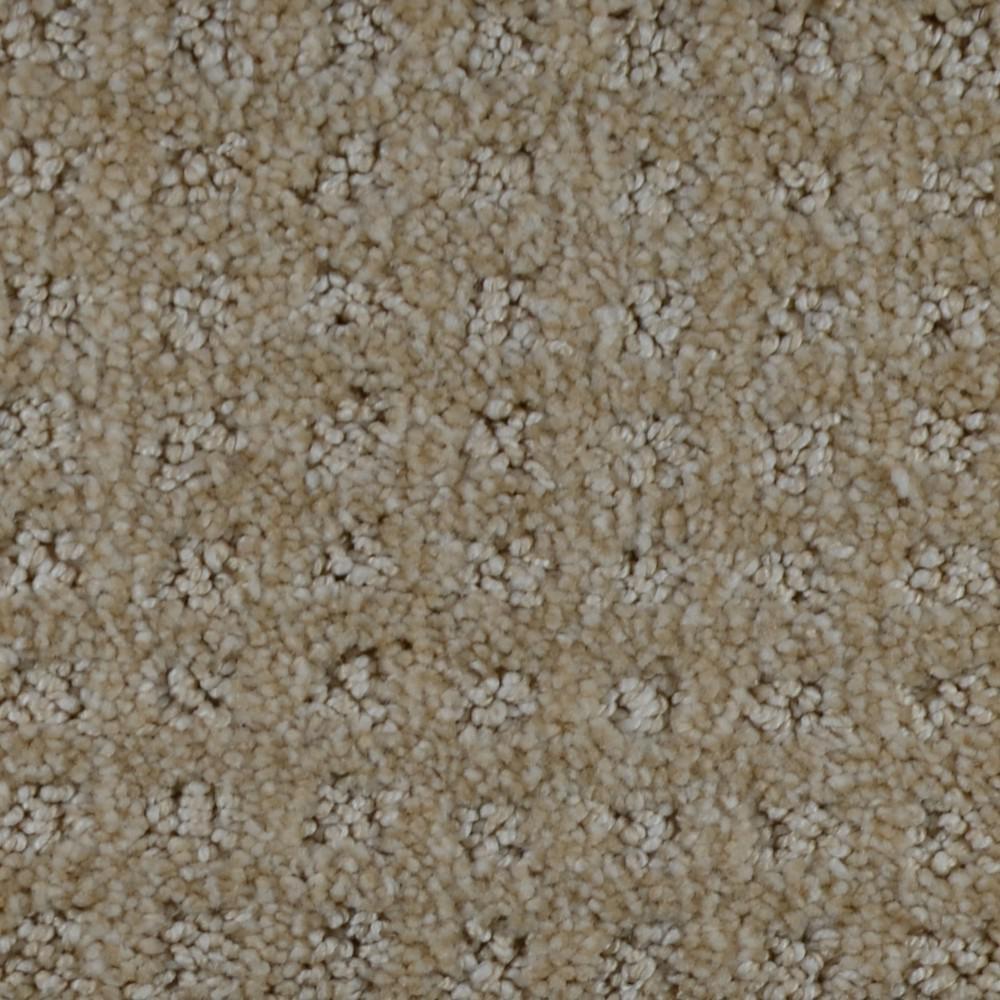 Home Decorators Collection Carpet Sample Traverse