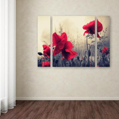 """30 in. x 41 in. """"Red For Love"""" by Philippe Sainte-Laudy Printed Canvas Wall Art"""