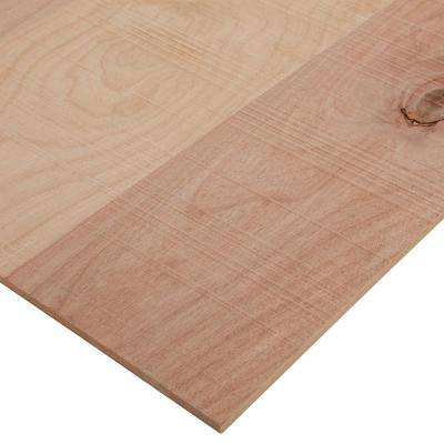 1/4 in. x 2 ft. x 4 ft. Rough Sawn Brich Plywood Project Panel
