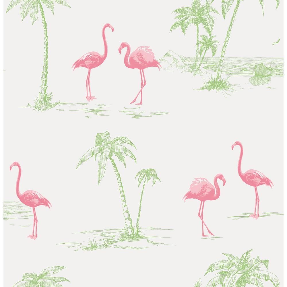 Sarasota Pink Flamingos Wallpaper Sample