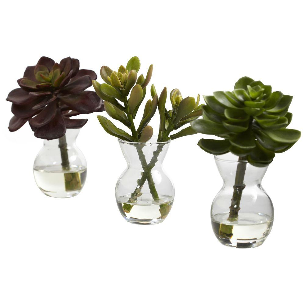 nearly natural succulent arrangements (set of 3)-4954-s3 - the home