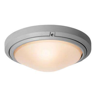 Oceanus 2-Light Satin Outdoor Flush/Wall Mount with Frosted Glass Shade