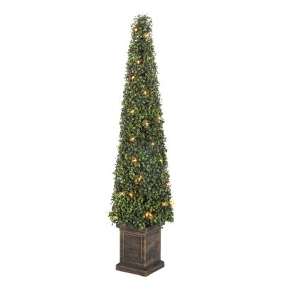 3.5 ft. Potted Boxwood Tower Tree
