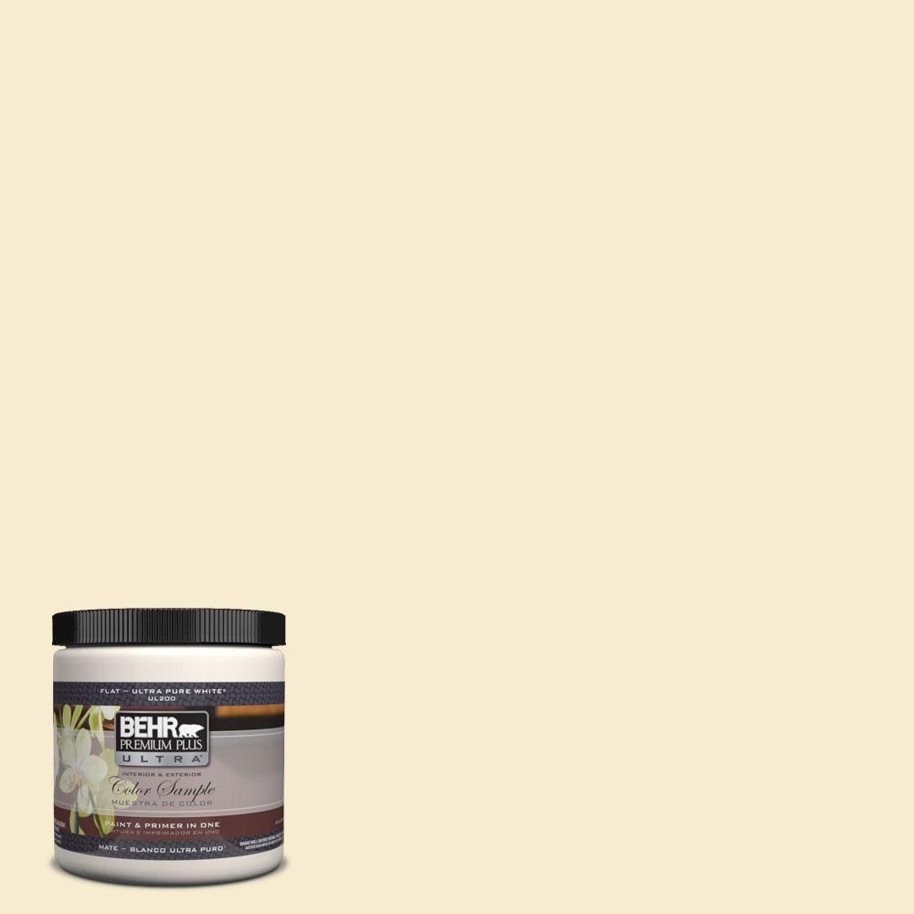 BEHR Premium Plus Ultra 8 oz. #380E-2 Lightning White Interior/Exterior Paint Sample