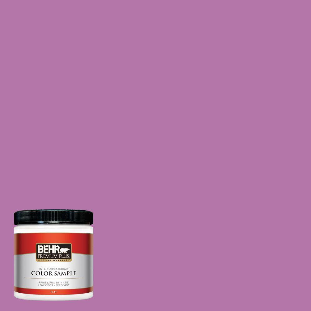 8 oz. #P110-5 Girls Only Interior/Exterior Paint Sample