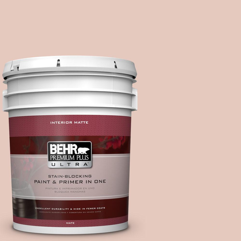 5 gal. #210E-3 Almond Willow Flat/Matte Interior Paint