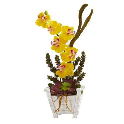 Indoor Phalaenopsis Orchid and Succulent Artificial Arrangement in Chair Planter