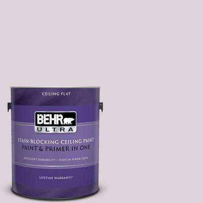 1 gal. #PPU16-07 Mystic Fairy Ceiling Flat Interior Paint and Primer in One