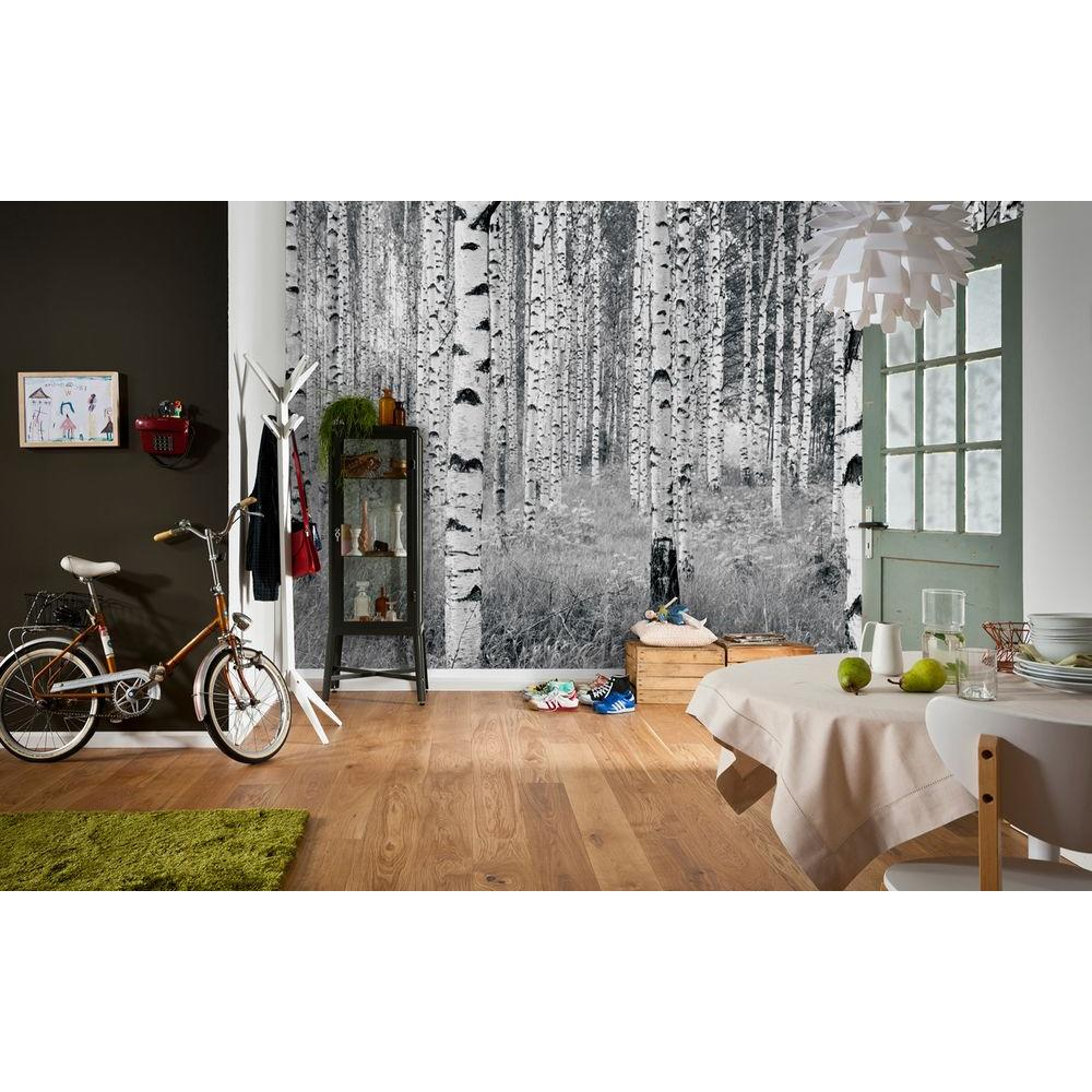 Komar 98 in h x 145 in w birch forest wall mural xxl4 for Mural alternatywy 4