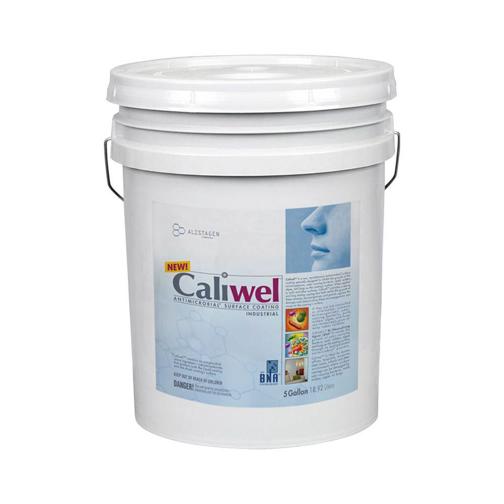 Caliwel Industrial 5-gal. Opaque Antimicrobial & Anti-Mold Coating for Behind Walls and Basements