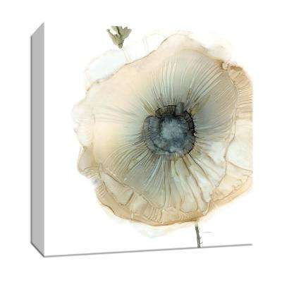15 in. x 15 in. ''Iridescent Poppy II'' By PTM Images Canvas Wall Art