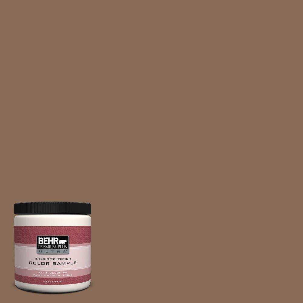 8 oz. #BNC-34 Spiced Latte Interior/Exterior Paint Sample