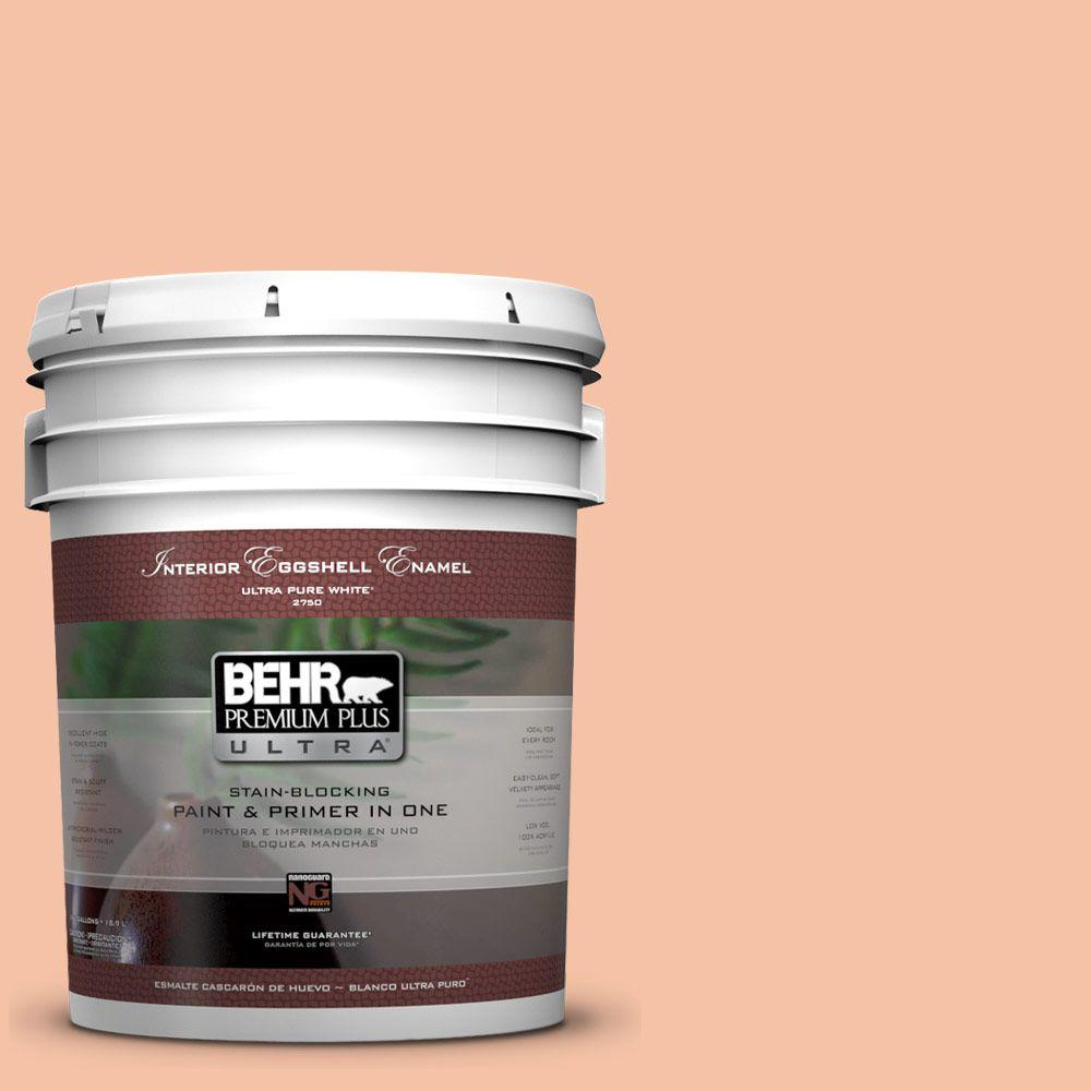 5 gal. #240C-3 Peach Damask Eggshell Enamel Interior Paint and Primer