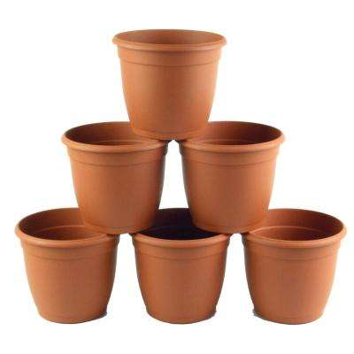 5.5 in D Terra Cotta Flower Pot (6-pack)