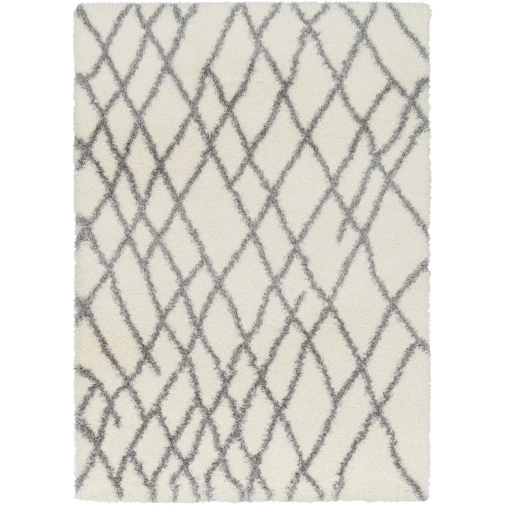 Cloudy Shag White 2 ft. x 3 ft. Indoor Area Rug