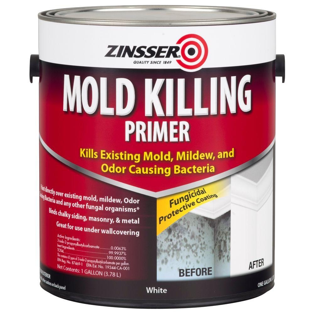 Zinsser Gal Mold Killing InteriorExterior Primer Case Of - Painting over mildew in bathroom