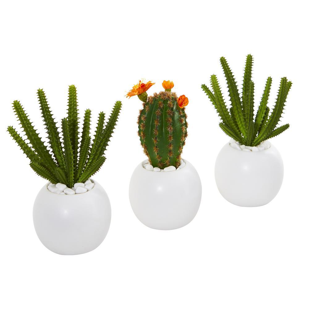 Set of 2 Different Size Artificial Succulents Plants Desert Cactus