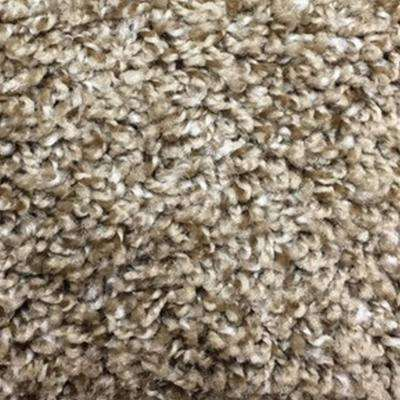 Carpet Sample - Hurried - Color Carowinds Twist 8 in. x 8 in.