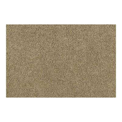 Carpet Sample - Cashmere III - Color Corded Wood Texture 8 in. x 8 in.