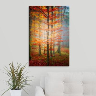 """Autumn's End"" by Philippe Sainte-Laudy Canvas Wall Art"