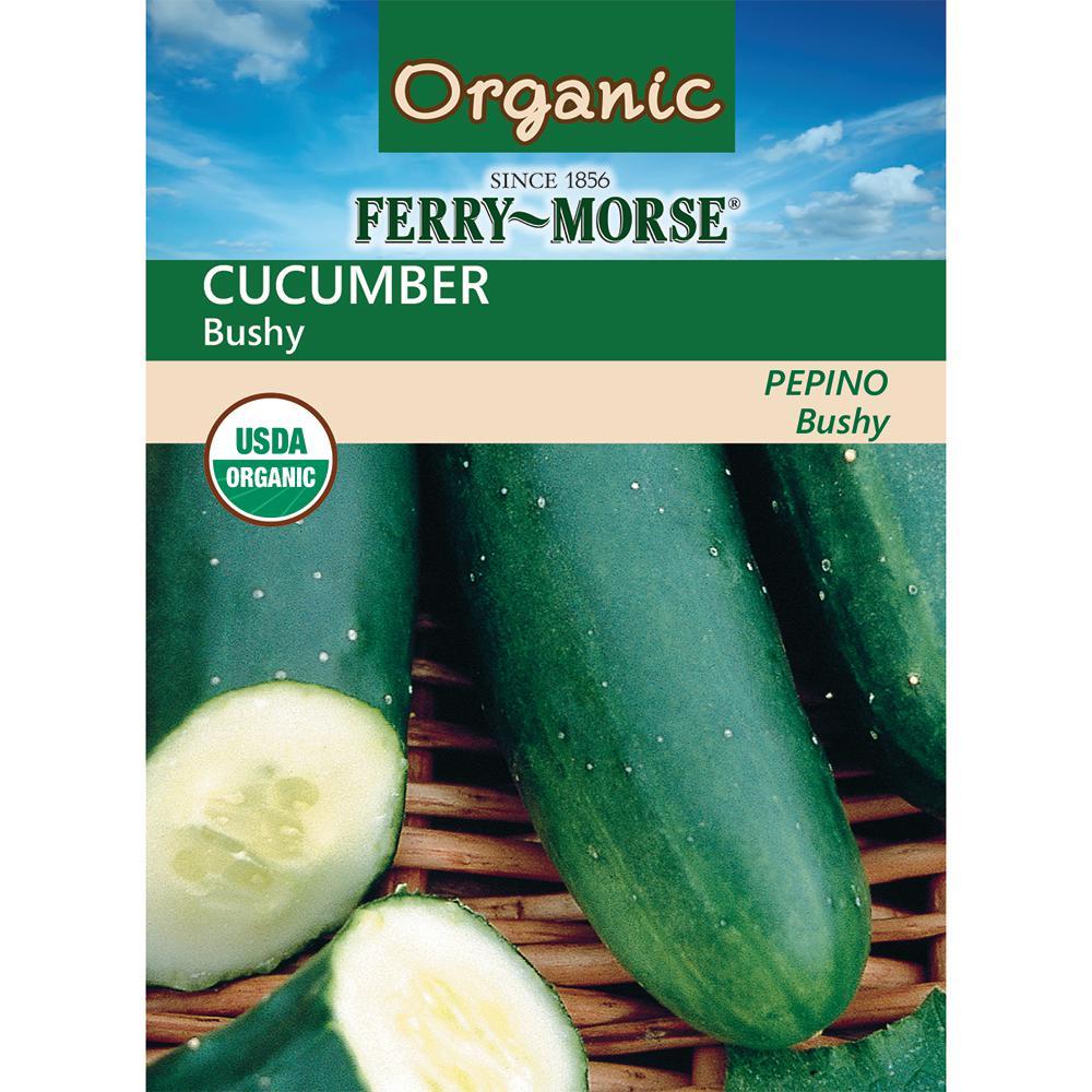 Cucumber Bushy Organic Seed