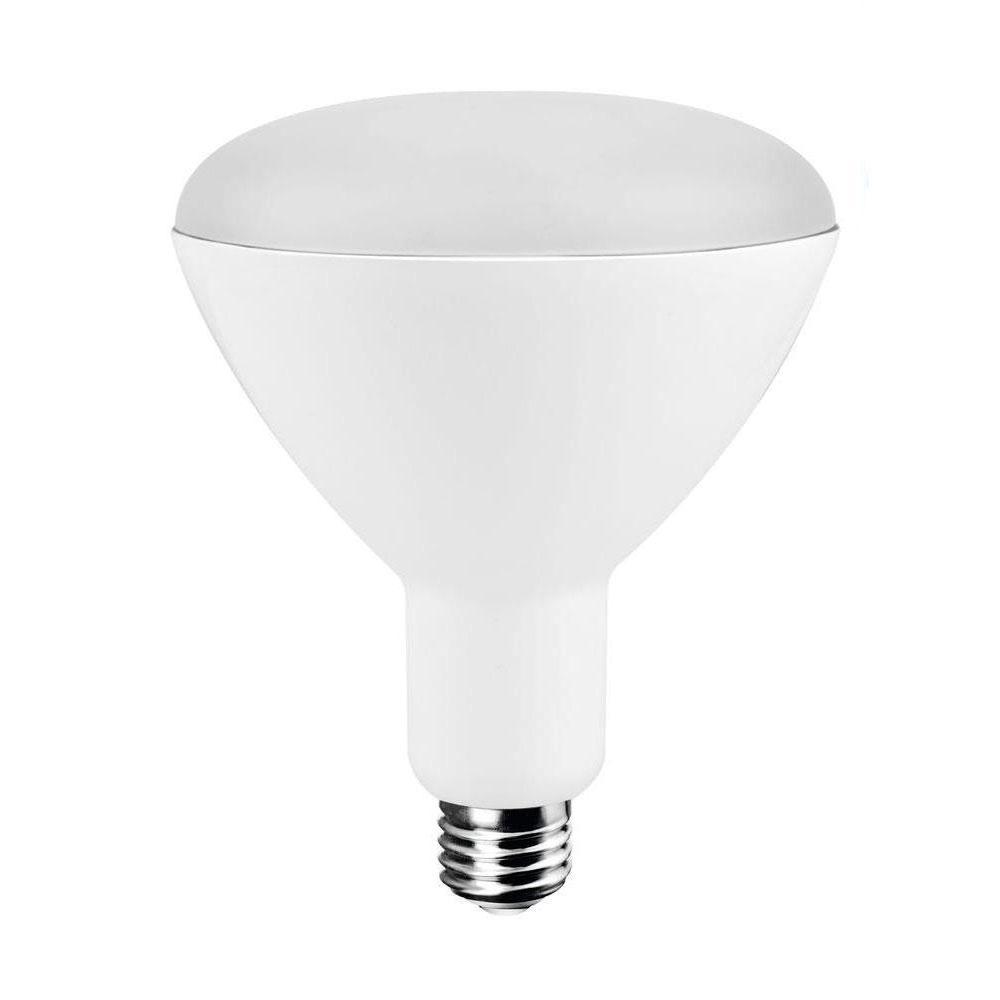 Daylight Led Bulbs: EcoSmart 75W Equivalent Daylight BR40 LED Light Bulb (4
