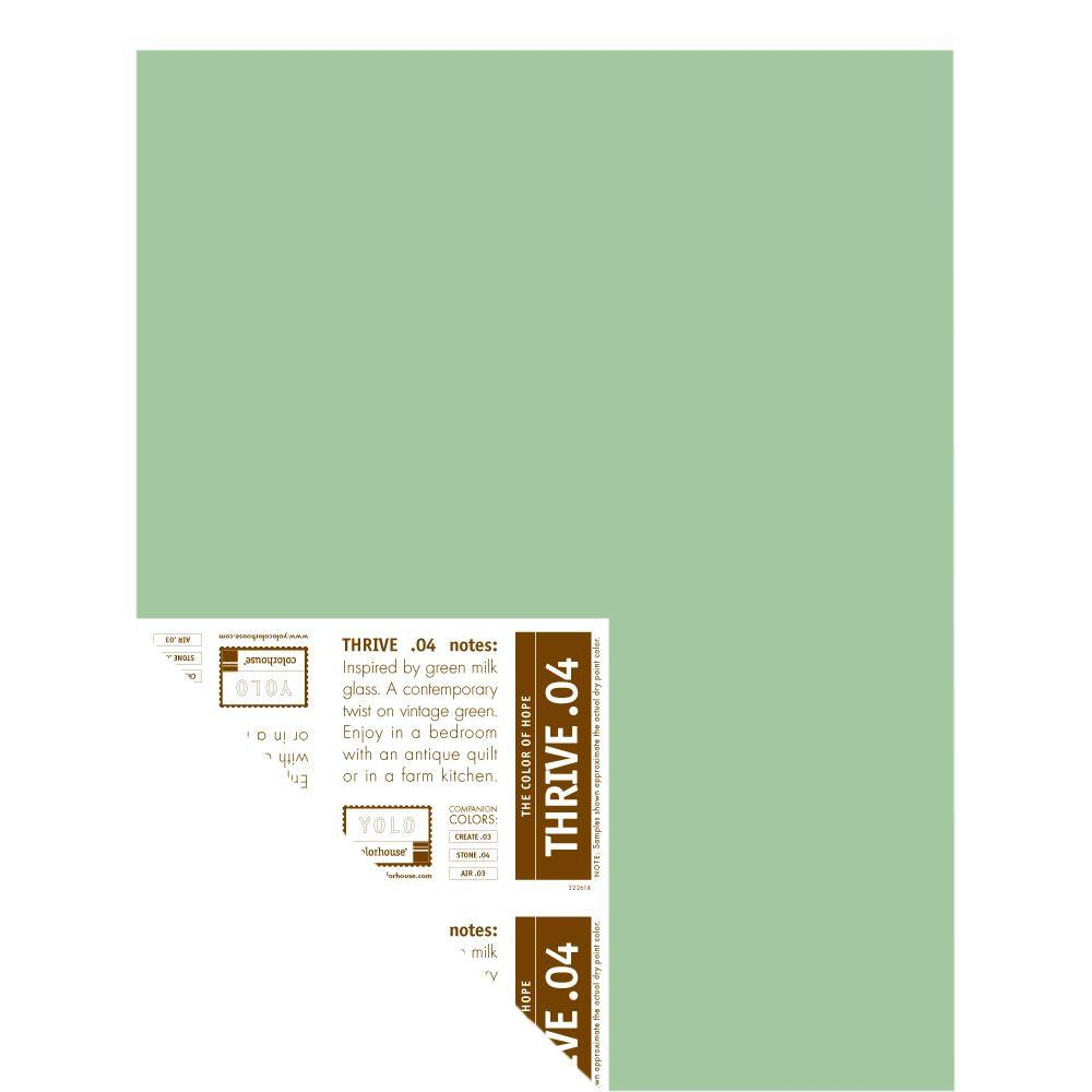 YOLO Colorhouse 12 in. x 16 in. Thrive .04 Pre-Painted Big Chip Sample