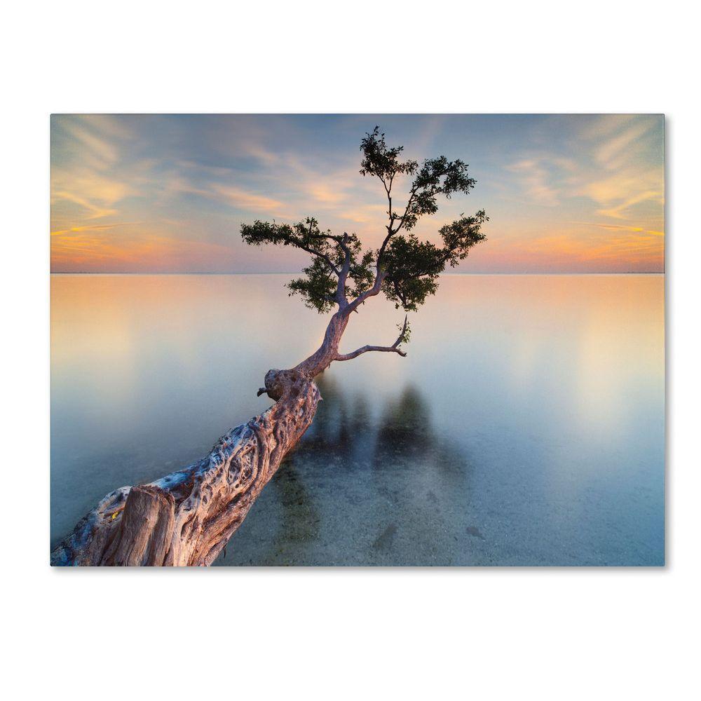 22 in. x 32 in. Water Tree XIV Canvas Art