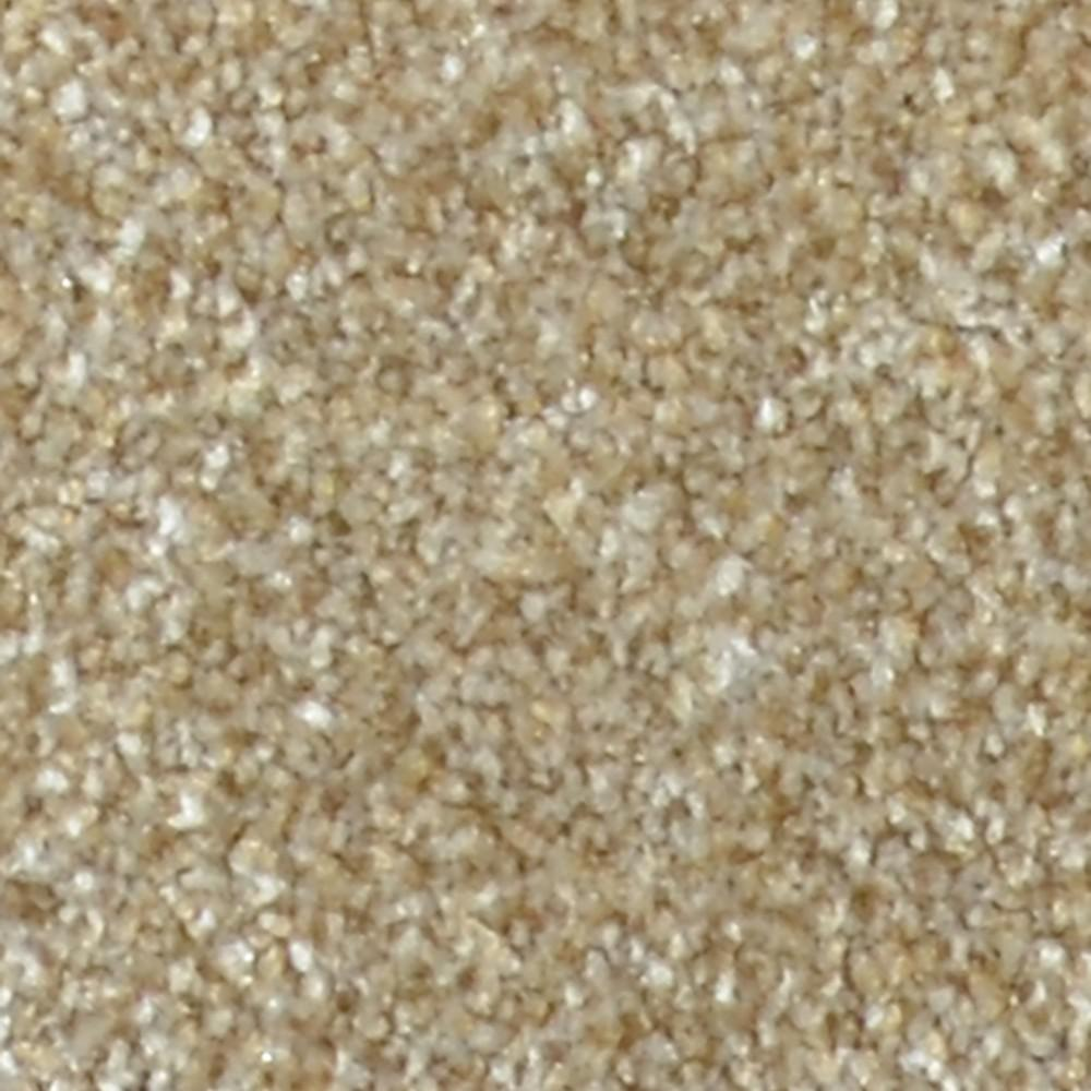 Carpet Sample - Harvest II - Color Grandfield Texture 8 in.