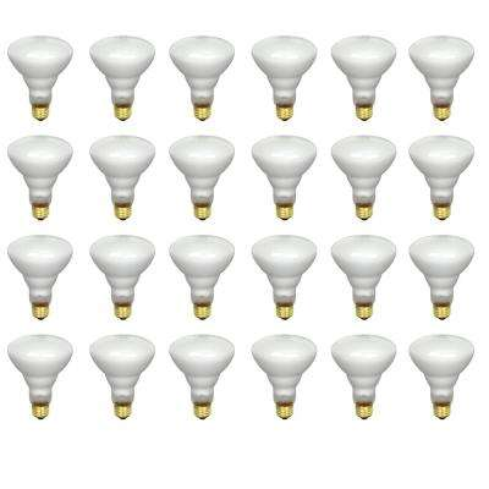 65-Watt Soft White Dimmable Incandescent BR40 Flood Light Bulb Maintenance Pack (24-Pack)