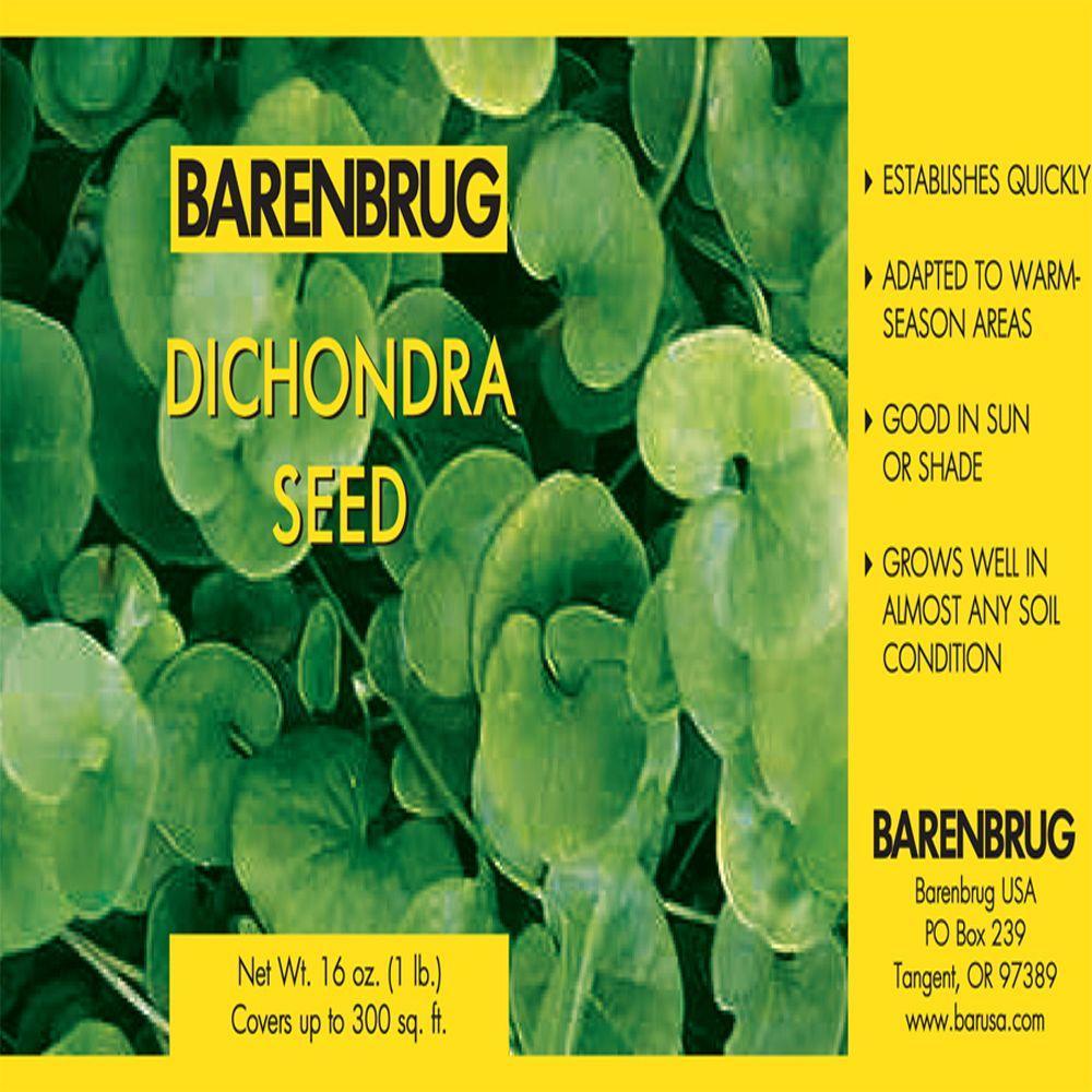 1 lb. Dichondra Grass Seed