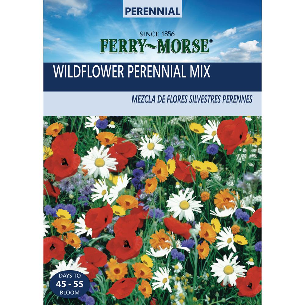 Ferry Morse Wildflower Perennial Mixture Seed 805 The Home Depot