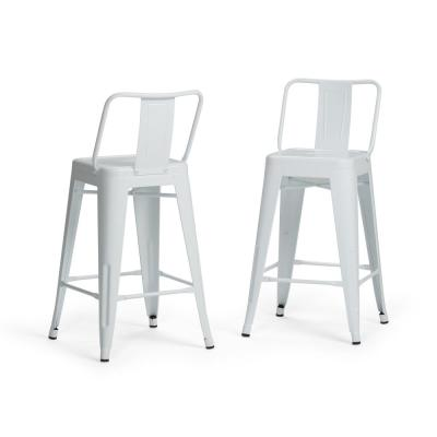 Rayne 24 in. White Industrial Metal Counter Height Stool (Set of 2)