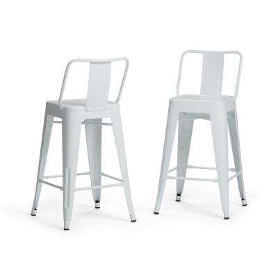 Rayne 24 in. White Metal Counter Height Stool (Set of 2)