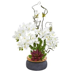 Phalaenopsis Orchid and Succulent Artificial Arrangement