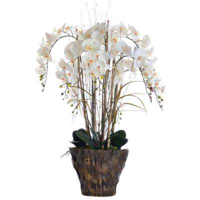27 in. x 27 in. x 38 in. Tall Orchid Arrangement in Fiber-Stone Pot